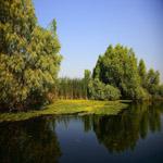 Lacul Uzlina